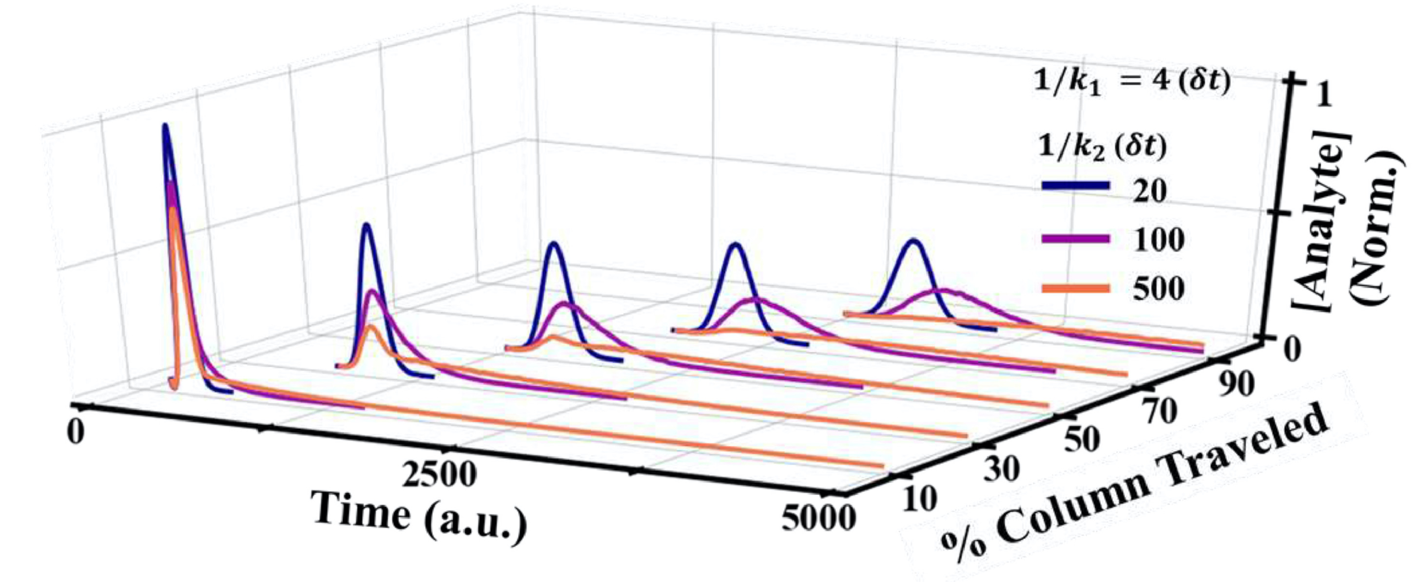 Unraveling peak asymmetry in chromatography through stochastictheory powered Monte Carlo simulations