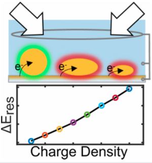 Spectral Response of Plasmonic Gold Nanoparticles to Capacitive Charging: Morphology Effects