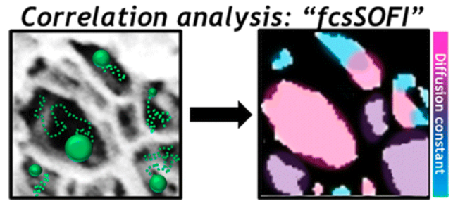 Characterization of Porous Materials by Fluorescence Correlation Spectroscopy Super-resolution Optical Fluctuation Imaging
