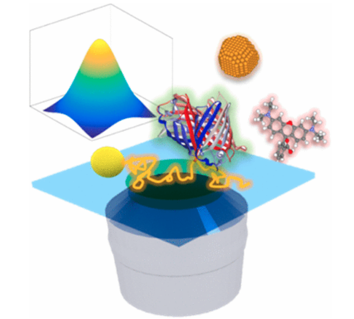 Single Particle Tracking: From Theory to Biophysical Applications