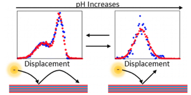 Charge-Dependent Transport Switching of Single Molecular Ions in a Weak Polyelectrolyte Multilayer